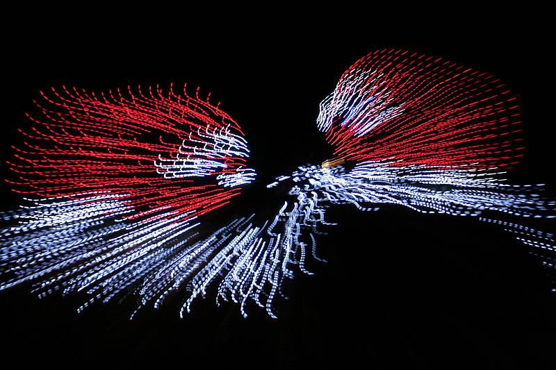 christmas lights tacoma zoo
